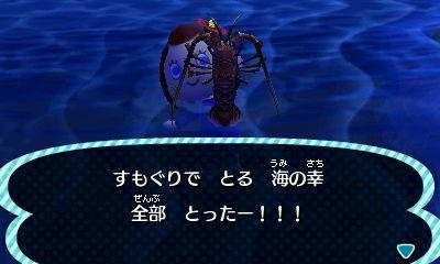 saigonouminosachi1.jpg