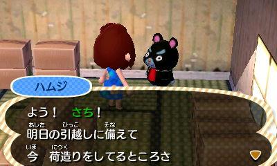 sayonarahamuji1.jpg