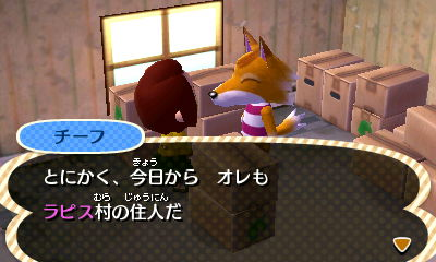 shi-fu_hiltukoshi.jpg