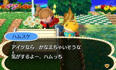 sonchounonegaigotobarashi1.jpg