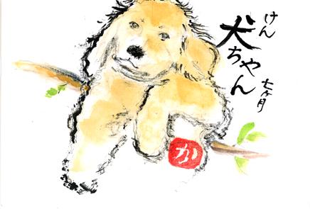 犬ちゃん0207