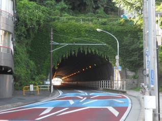 ツタの垂れ下がったトンネル