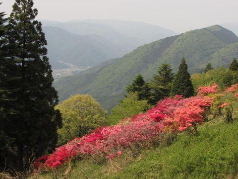 比叡山つつじヶ丘