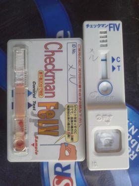 DCIM0064mr.jpg