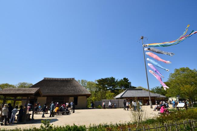 ひたち海浜公園_0098