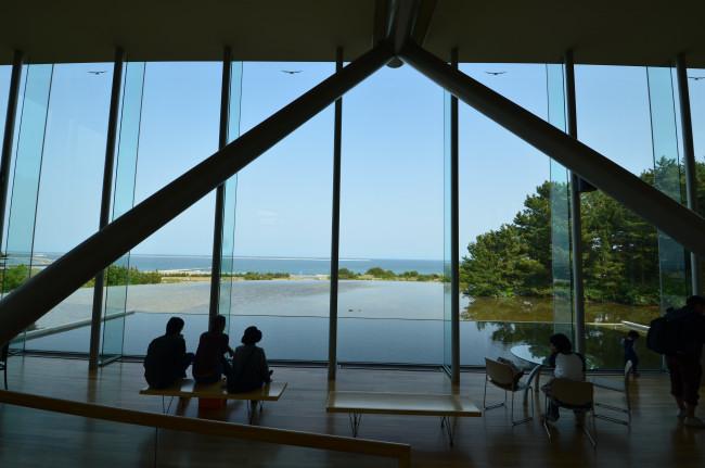 ブログ用ひたち海浜公園_0310