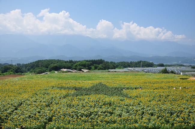 奥穂高岳_0012