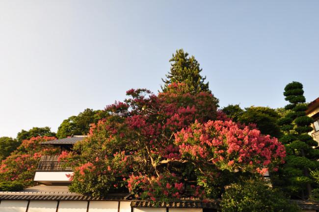 奥穂高岳_0064