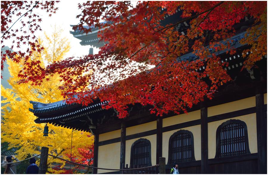 秋の京都・助手2