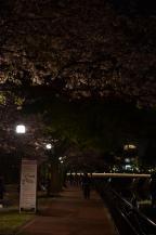 2013 九州旅行 199kopi