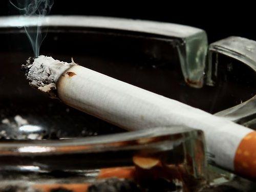 まさかたばこを吸ったら癌になるとか思ってる馬鹿はいないよな?