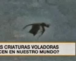【緊急速報】チリにドラゴン出現チリにドラゴン出現