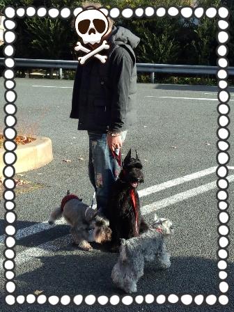 2013-11-25-20-21-13_deco.jpg