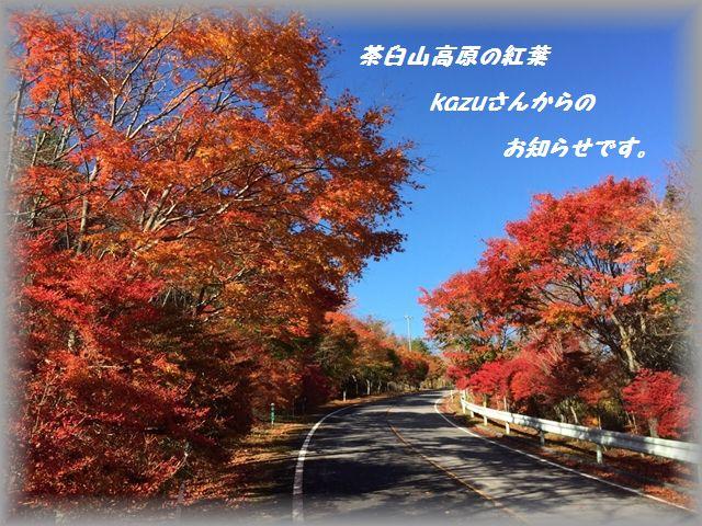 2014110300.jpg
