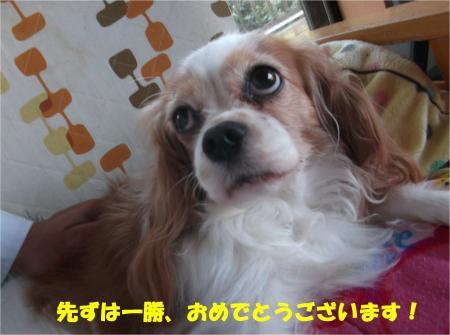 01_convert_20141110172825.jpg