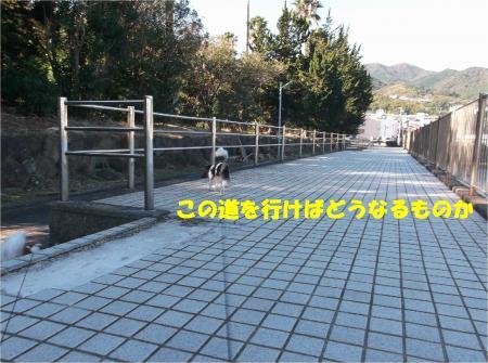 01_convert_20141118182052.jpg