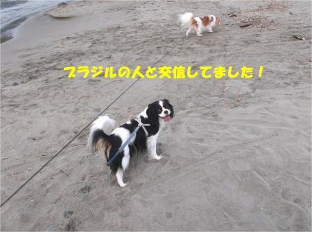 02_convert_20141027171538.jpg