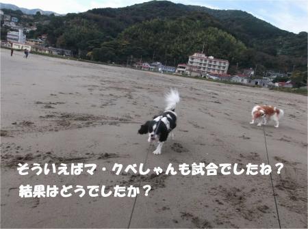 02_convert_20141110172835.jpg