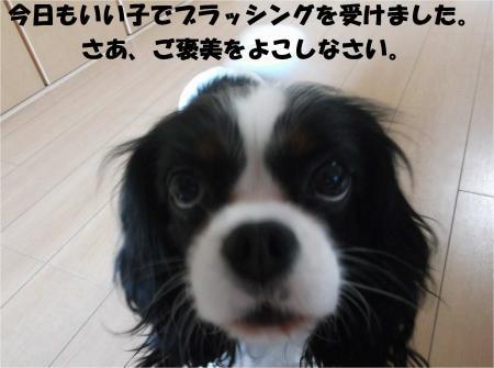 02_convert_20141119180606.jpg