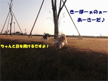 02_convert_20141125175630.jpg