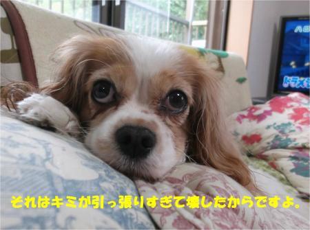 03_convert_20141028185452.jpg
