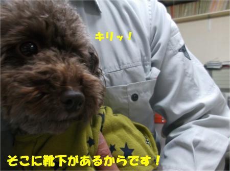 03_convert_20141030180349.jpg