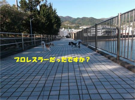 03_convert_20141118182113.jpg