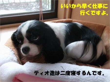 03_convert_20141121174745.jpg