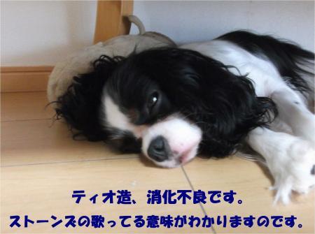 04_convert_20141028185511.jpg