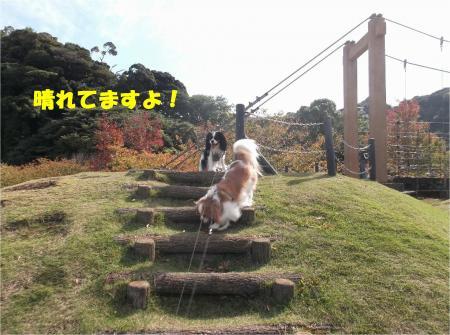 04_convert_20141104174709.jpg
