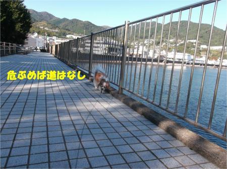 04_convert_20141118182123.jpg