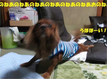 05_convert_20141022175538.jpg