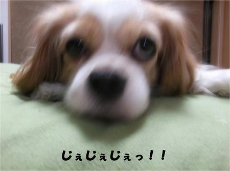 05_convert_20141031171404.jpg