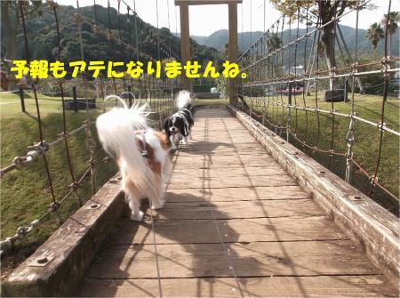 05_convert_20141104174719.jpg