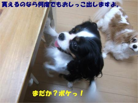 05_convert_20141112172934.jpg