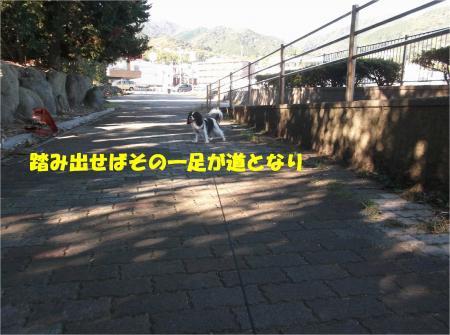 05_convert_20141118182133.jpg