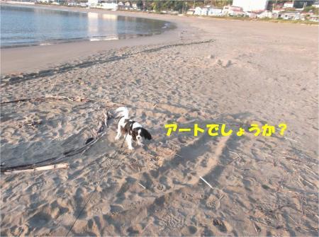 05_convert_20141125175713.jpg
