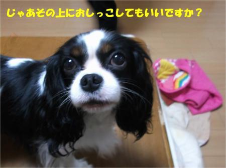 06_convert_20141024142733.jpg