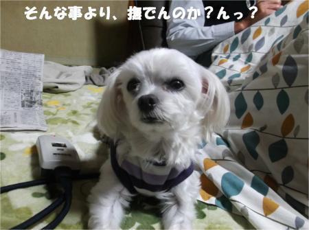06_convert_20141030180417.jpg