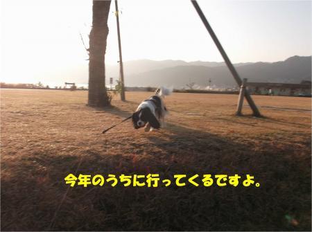 06_convert_20141126170615.jpg