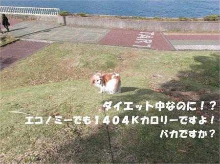 07_convert_20141105172543.jpg