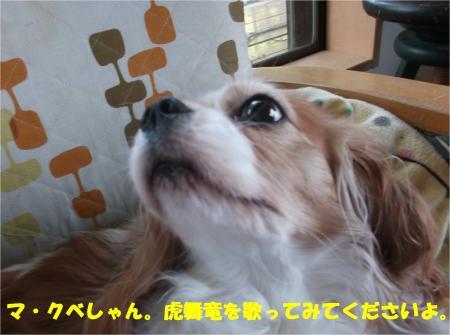 07_convert_20141111173014.jpg