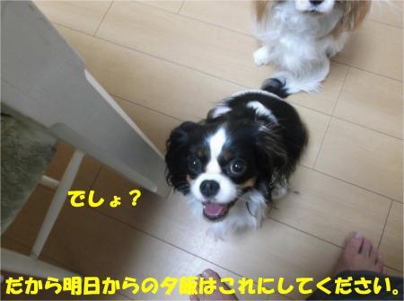 07_convert_20141112172952.jpg