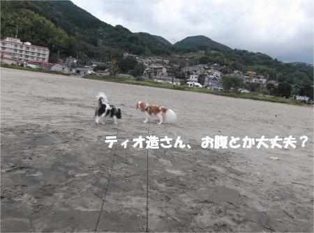 07_convert_20141117173231.jpg