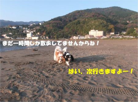 07_convert_20141125175734.jpg