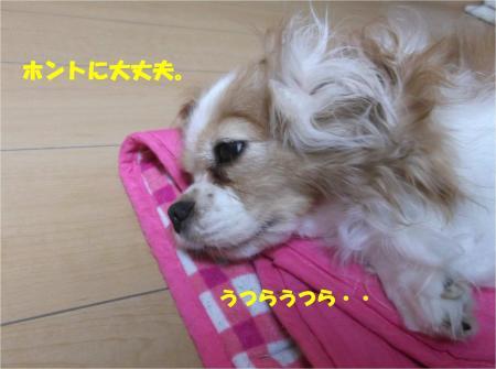 08_convert_20141023180500.jpg