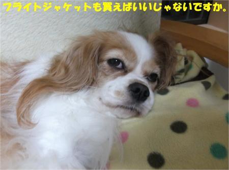 08_convert_20141024142753.jpg