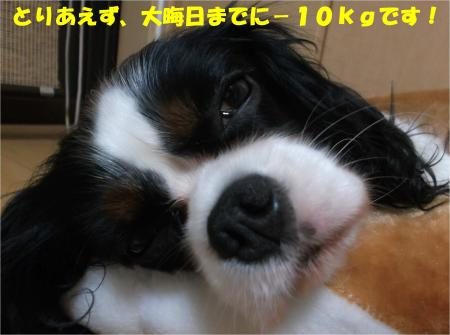 08_convert_20141031171431.jpg
