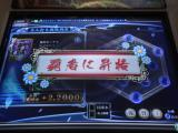 DSC02429.jpg
