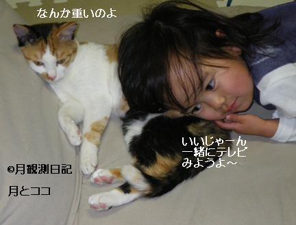 20130405tsuki1.jpg